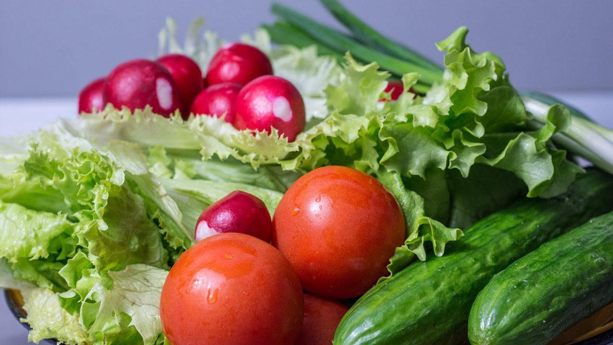 Toortoidu dieet